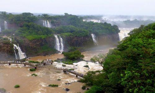 Zdjęcie BRAZYLIA / okolice Foz de Iguazu / Wodospady Iguazu /  widok z góry na dolną trasę