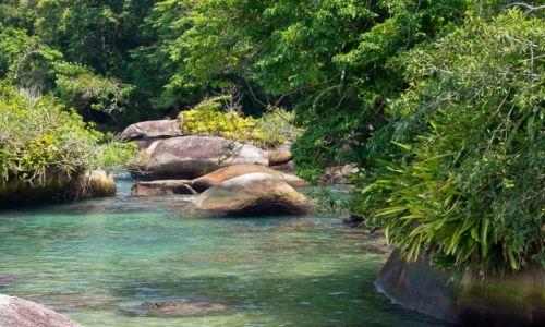 Zdjęcie BRAZYLIA / Costa Verde / NP Serra da Bocaina / Tonąc w zieleni