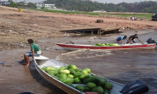 Zdjecie BRAZYLIA / Manaus / Manaus / arbuzowa droga