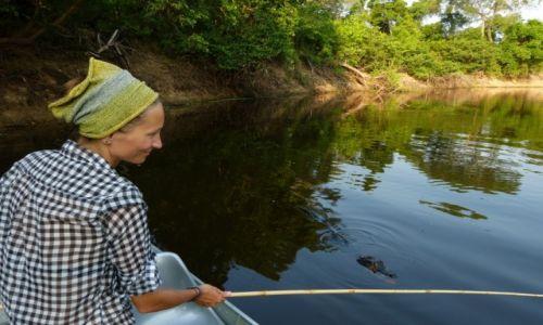 BRAZYLIA / Gran Chaco / Pantanal /  Na rybkach - Cichy konkurent.