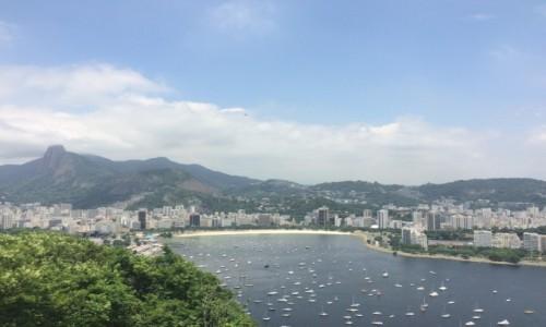 Zdjecie BRAZYLIA / Rio de Janeiro / Botafogo Bay / Brazylia