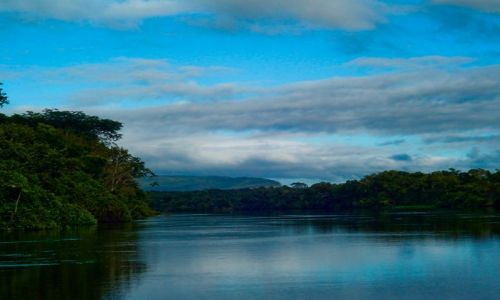 Zdjęcie BRAZYLIA / Amazonia / 400 km na północ od Villa Bela de Santissimo Trinidad / Rio Guapore