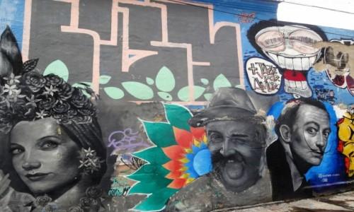 Zdjęcie BRAZYLIA / Rio de Janeiro / Lapa /  Jorge Selaron - malarz i rzeźbiarz, twórca słynnych schodów - na muralu