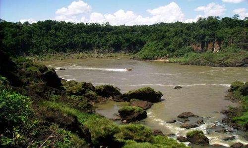 Zdjęcie BRAZYLIA / brazylia / foz do iguasu / w drodze  na wodospady foz do iguasu