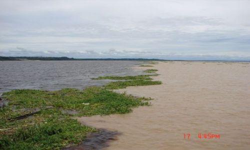 Zdjęcie BRAZYLIA / okolice Manaus / Rio Negro i Amazonka / gdzie Amazonka i Rio Negro się spotkały...