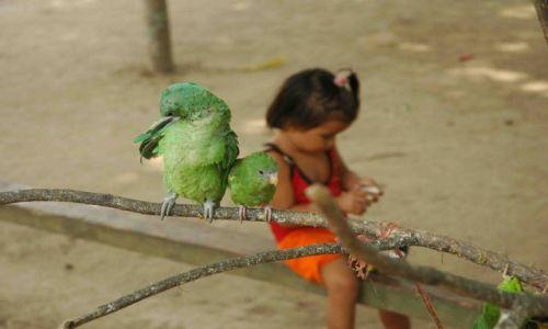 Zdjęcie BRAZYLIA / amazonia / okolice Manaus / dziewczynka z papużkami