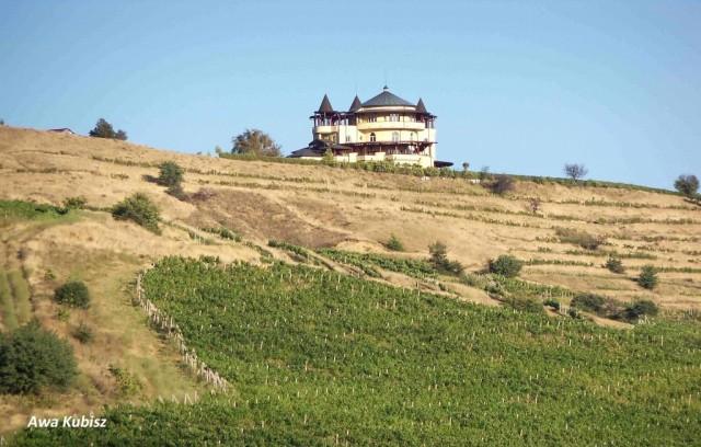 Zdjęcia: Okolice Melnika, Południe, Właściciele bułgarskich winnic nierzadko mieszkają w prawdziwych pałacach, BUłGARIA