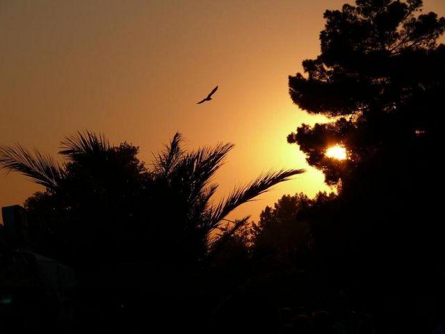 Zdjęcia: Słoneczny Brzeg, Słoneczny Brzeg, Bulgaria, BUłGARIA