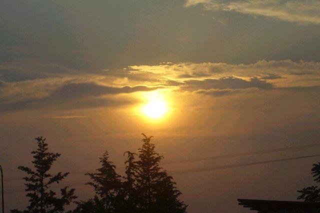 Zdjęcia: Sloneczny Brzeg, Sloneczny Brzeg, Bulgaria cd, BUłGARIA