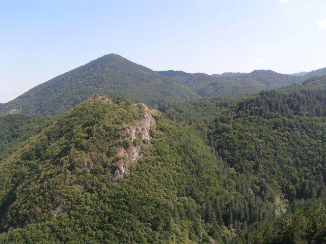 Zdjęcia: Przełęcz Prislop, Pirin, Zalesione pasmo gór, BUłGARIA