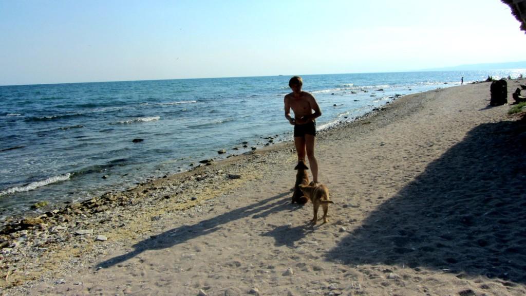 Zdjęcia: Orca Bay, Północne Wybrzeże, Prywatny raj w ORCA BAY, BUłGARIA