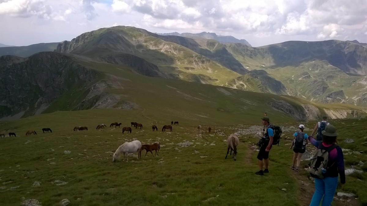 Zdjęcia: Bułgaria, Bułgaria, Bułgaria Malowica, BUłGARIA