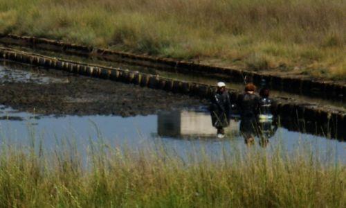 Zdjęcie BUłGARIA / obwód Burgas / Nessebar / cóż się nie robi dla zdrowia i urody
