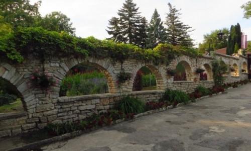 Zdjecie BUłGARIA / okolice Warny / Bałczik / w parku