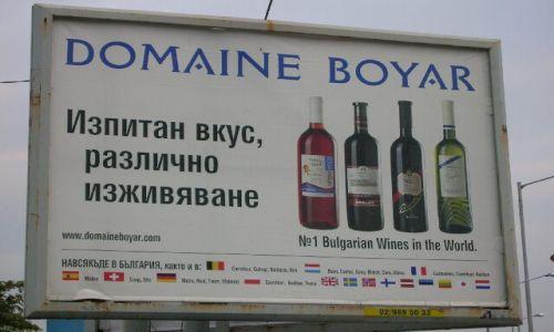 Zdjecie BU�GARIA / brak / Bu�garska codzienno�� / Wina, wina wina
