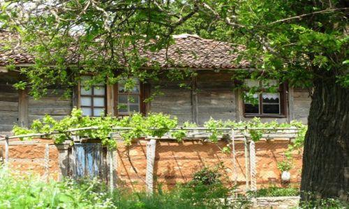 Zdjecie BUłGARIA / Burgas / gdzieś w Strandży / Bułgarska wieś