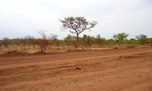 Zdjęcie BURKINA FASO / Comoe / okolice Banfory / Droga