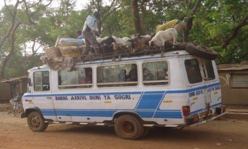 Zdjecie BURKINA FASO / Nahouri / Tiebele / Transport lokalny