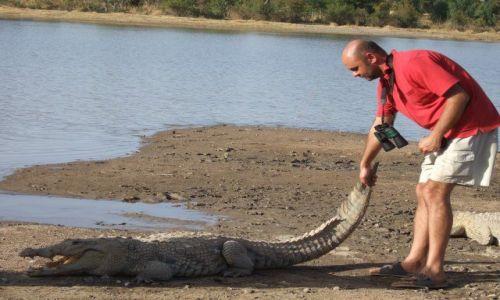 Zdjęcie BURKINA FASO / - / okolice Bobo-Diulaso / Zabawa z krokodylem