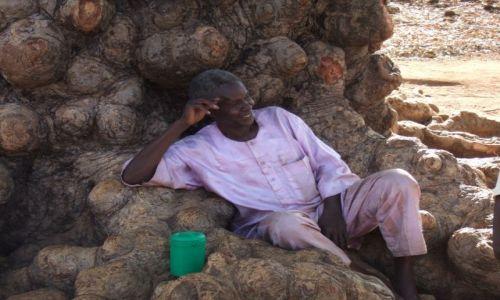 Zdjęcie BURKINA FASO / - / burkina Faso / odpoczynek
