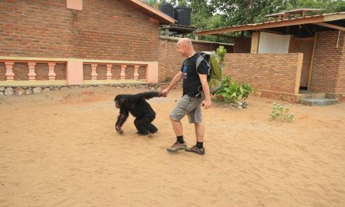 Zdjęcie BURUNDI / Burundi / Burundi / Ja i mój przyjaciel szympans