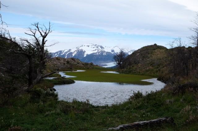 Zdjęcia: Torres del Paine, Patagonia, Jeziorko na szlaku do Mirador Grey, CHILE