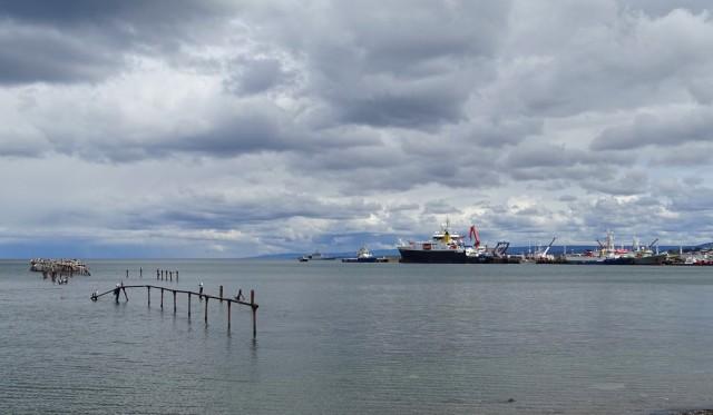 Zdjęcia: Punta Arenas, Patagonia- region Magallanes, Cieśnina Magellana, CHILE