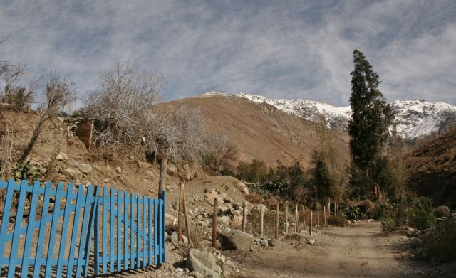 Zdjęcia: Pisco Elqui, plot, CHILE