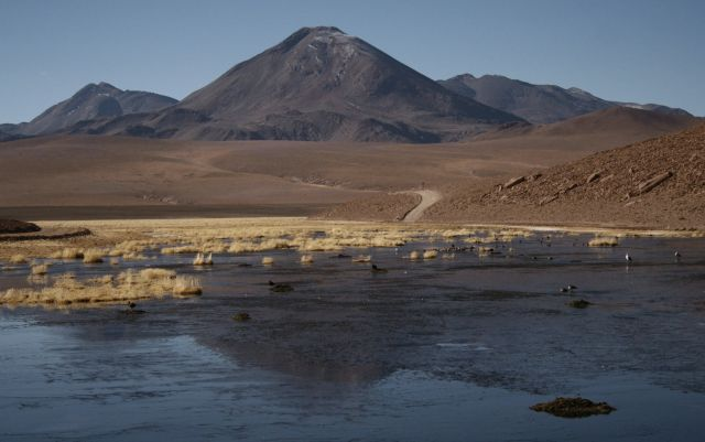 Zdjęcia: El Tatio Geysers, wulkan, CHILE