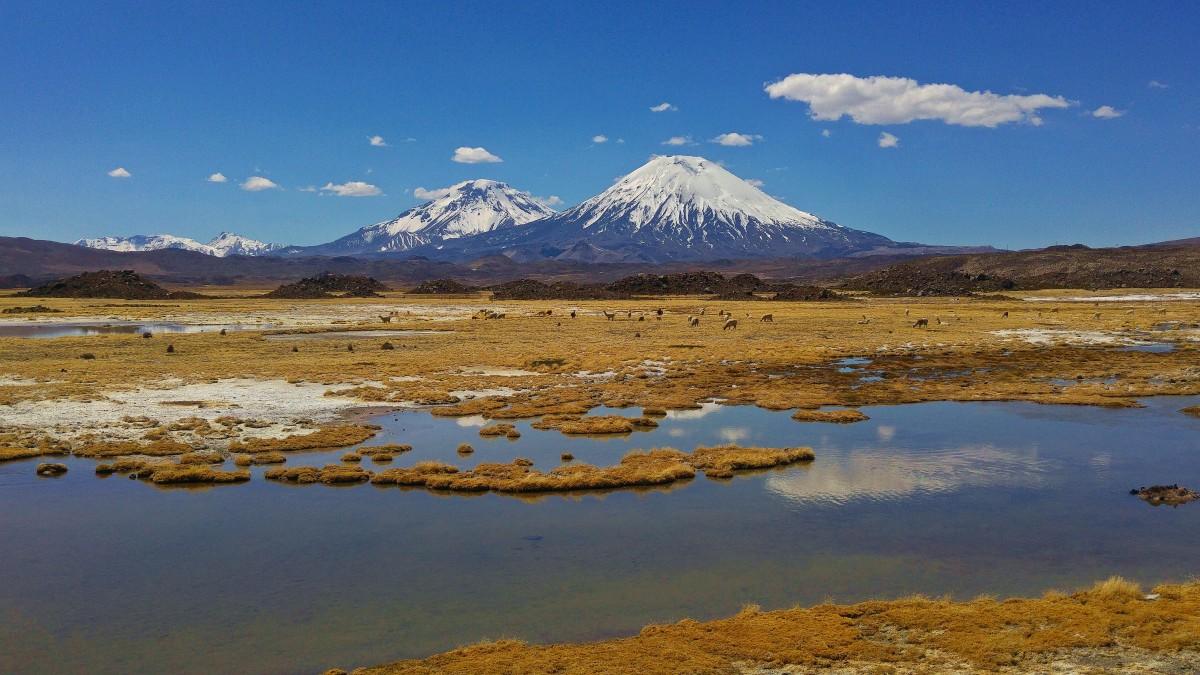 Zdjęcia: Park Narodowy Lauca, Arica y Parinacota, Wulkan Pinaracota z wulkanem Pomerape w tle , CHILE