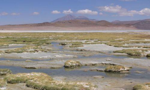 CHILE / Atacama / Droga z  Paso de Sico / Laguna