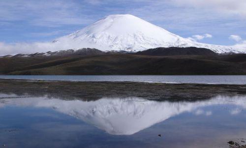 CHILE / Region XV / PN Lauca / Lago Chungara