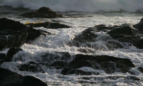 Zdjęcie CHILE / Santiago / Isla Negra / Niespokojny Spokojny
