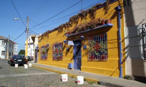 Zdjęcie CHILE / Valparaiso / Valparaiso / Kolory Valparaiso (3)