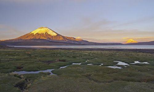 CHILE / Północ / National Park Lauca  /  Lago Chungará i Parinacota