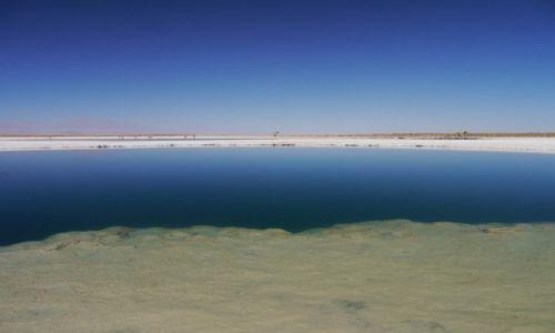 Zdjecie CHILE / SanPedroAtacama / Atacama / Pustynia Atacama