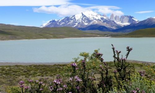 CHILE / Patagonia / NP Torres del Paine /