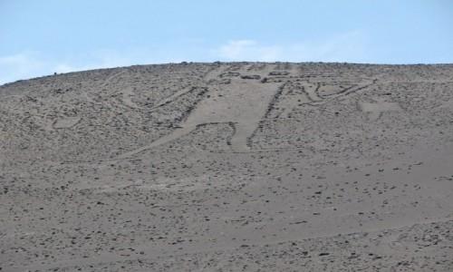 Zdjęcie CHILE / TARAPACA / okolica HUARA / Gigant z Atacama