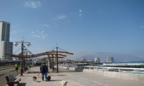 Zdjecie CHILE / TARAPACA / IQUIQUE / promenada