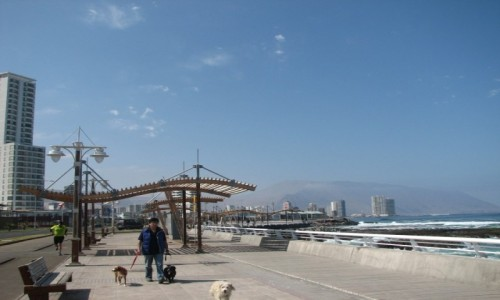 Zdjęcie CHILE / TARAPACA / IQUIQUE / promenada