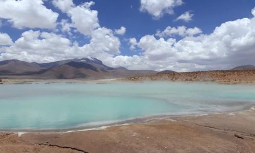 Zdjęcie CHILE / RN Las Vicunas / Salar de Surire / Gorące źródła