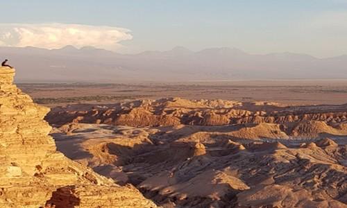 Zdjecie CHILE / Atacama / Valle de la Luna-Dolina Księżycowa / Czekając na zachód słońca