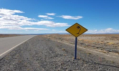 CHILE / Patagonia / gdzieś po drodze / Wieje jak w ... Patagonii