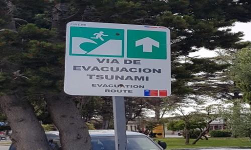 CHILE / Patagonia / Punta Arenas / Na wypadek...