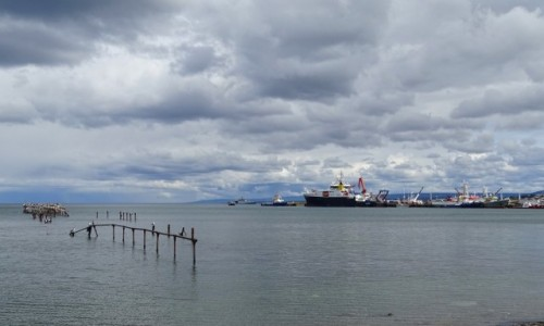 CHILE / Patagonia- region Magallanes / Punta Arenas / Cieśnina Magellana
