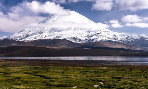 Zdjecie CHILE / Arica i Parinacota / NP Lauca / Jezioro Chungara i górujący wulkan Parinacota