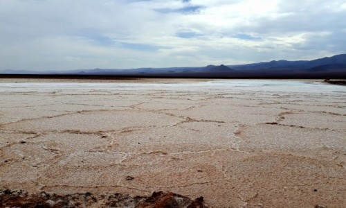 Zdjecie CHILE / Atacama / Atacama / Solnisko na pustyni Atacama