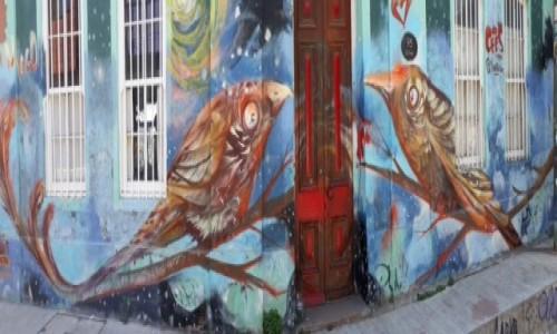 Zdjęcie CHILE / Chile środkowe,  Valparaiso  / Valparaiso / Mural podłużny