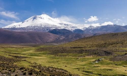 Zdjęcie CHILE / Arica y Parinacota / z wioski Guallatire (wulkan o tej samej nazwie) / Zielona dolina