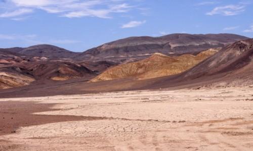 CHILE / Atacama / nadbrzeżny park Pan de Azucar / Krajobrazy Chile